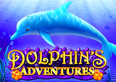 Dolphins Adventure