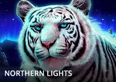 Northern Lights T1