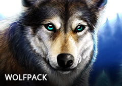 Wolfpack T1