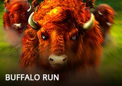 Buffalo Run T2