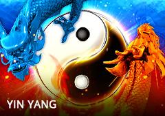 Yin Yang T2