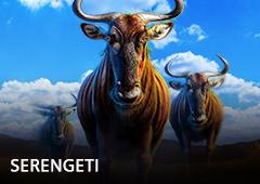 Serengeti T1