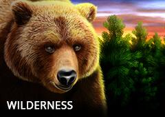 Wilderness T1