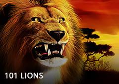 101 Lions T1