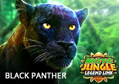 Black Panther T2