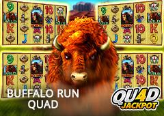 Buffalo Run Quad T2